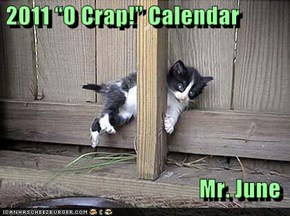 "2011 ""O Crap!"" Calendar  Mr. June"