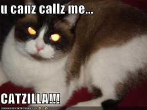 u canz callz me...  CATZILLA!!!