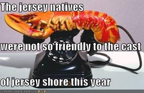 The jersey natives were not so friendly to the cast of jersey shore this year