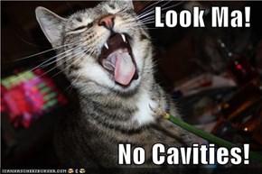 Look Ma!  No Cavities!