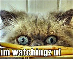 im watchingz u!