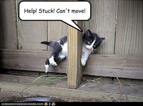 Help! Stuck! Can't move!