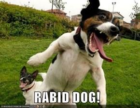 RABID DOG!