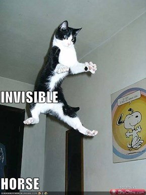 INVISIBLE HORSE