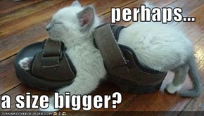 perhaps...  a size bigger?