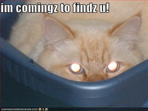im comingz to findz u!