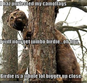 I haz purfected my camoflags I will now get jumbo birdie...oh boy. Birdie is a whole lot bigger up close.