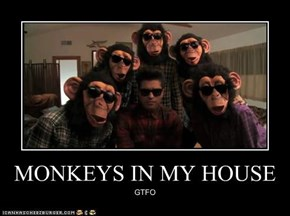 MONKEYS IN MY HOUSE