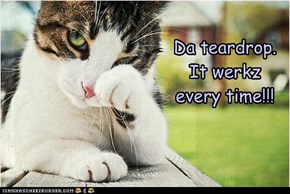 Da teardrop