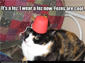 It's a fez. I wear a fez now. Fezes are cool.