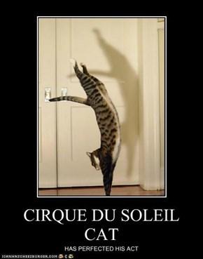 CIRQUE DU SOLEIL CAT