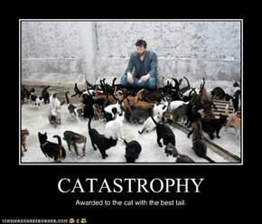 CATASTROPHY