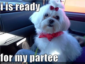 i is ready  for my partee