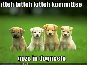 itteh bitteh kitteh kommittee  goze in dogneeto