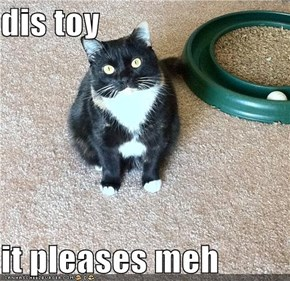 dis toy  it pleases meh