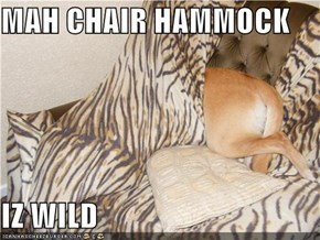 MAH CHAIR HAMMOCK  IZ WILD