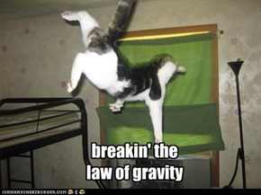 breakin' the law of gravity