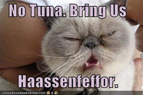 No Tuna. Bring Us  Haassenfeffor.