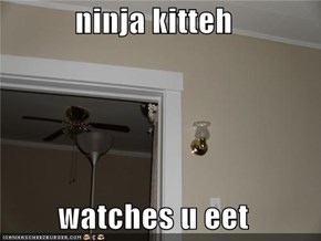 ninja kitteh  watches u eet