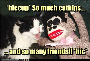 *hiccup* So much catnips...     ... and so many friends!! *hic*