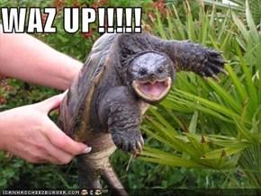 WAZ UP!!!!!