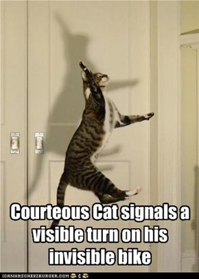 Courteous Cat signals a visible turn on his invisible bike