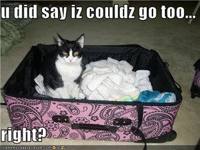 u did say iz couldz go too...  right?