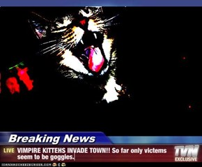 Breaking News - VIMPIRE KITTEHS INVADE TOWN!! So far only victems seem to be goggies.