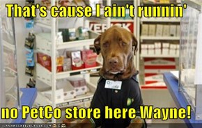 That's cause I ain't runnin'  no PetCo store here Wayne!