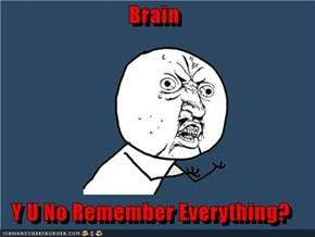 Brain  Y U No Remember Everything?