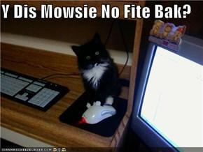 Y Dis Mowsie No Fite Bak?