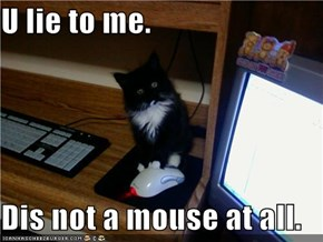 U lie to me.  Dis not a mouse at all.