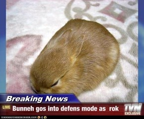 Breaking News - Bunneh gos into defens mode as  rok
