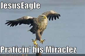 JesusEagle  Praticin' his Miraclez