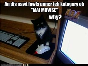 Awl mowses ar belongs tu meh!