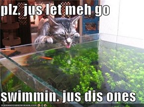 plz. jus let meh go  swimmin. jus dis ones