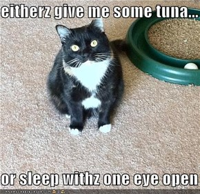 eitherz give me some tuna...  or sleep withz one eye open