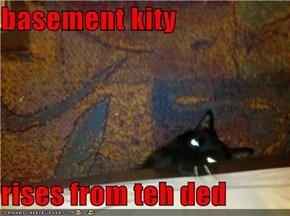 basement kity  rises from teh ded