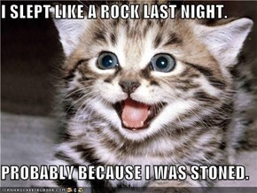 I SLEPT LIKE A ROCK LAST NIGHT.  PROBABLY BECAUSE I WAS STONED.