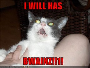 I WILL HAS   BWAINZ!!1!