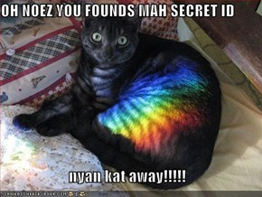 OH NOEZ YOU FOUNDS MAH SECRET ID  nyan kat away!!!!!