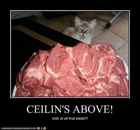 CEILIN'S ABOVE!