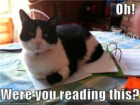Oh!  Were you reading this?
