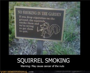 SQUIRREL SMOKING