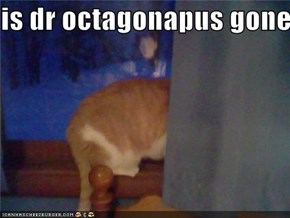 is dr octagonapus gone