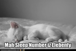 Mah Sleep Number iz Elebenty