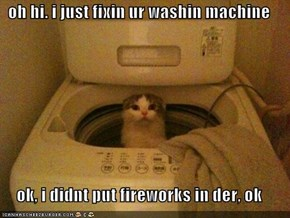 oh hi. i just fixin ur washin machine  ok, i didnt put fireworks in der, ok