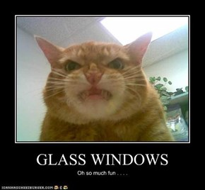 GLASS WINDOWS