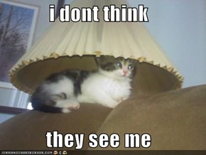 i dont think   they see me