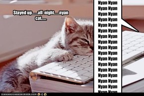 Stayed up.......all  night......nyan cat......